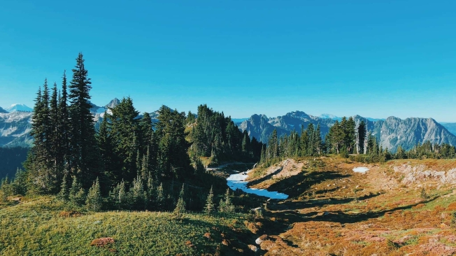 View from Mount Rainier National Park