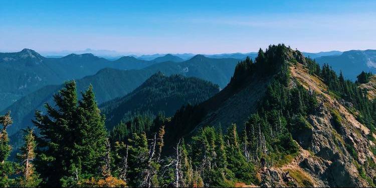 Tolmie Park Trail | Mt. Rainier